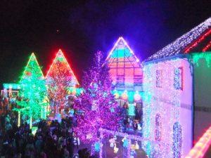 東京ドイツ村 クリスマス 混雑