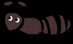ノーマット 蟻