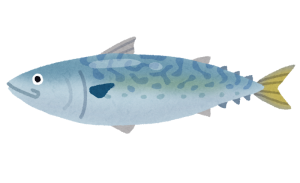 青魚 種類
